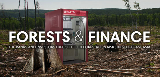Forests & Finance - The banks and investors exposed to deforestation risks in Southeast Asia