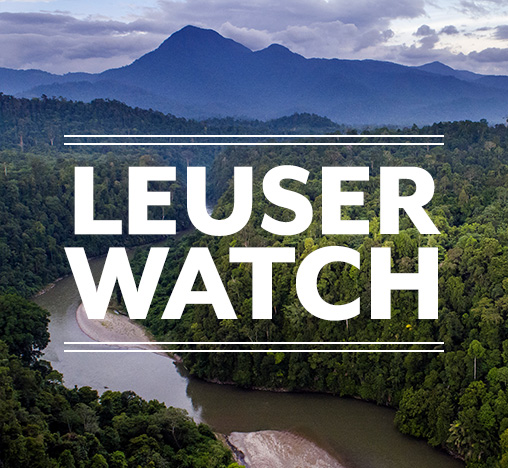 Leuser Watch