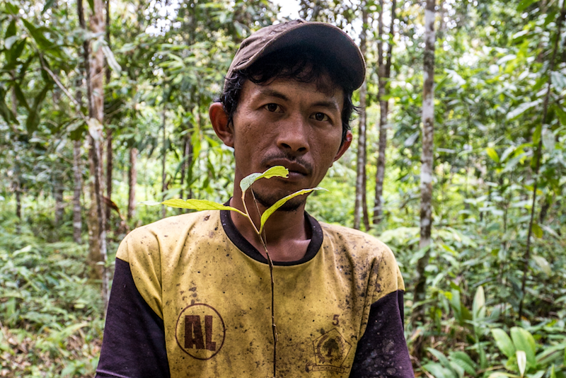 Sarip Simamora, Desa Aek Lung, Sumatera Utara, Indonesia