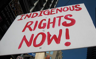 Indigenous Rights Now