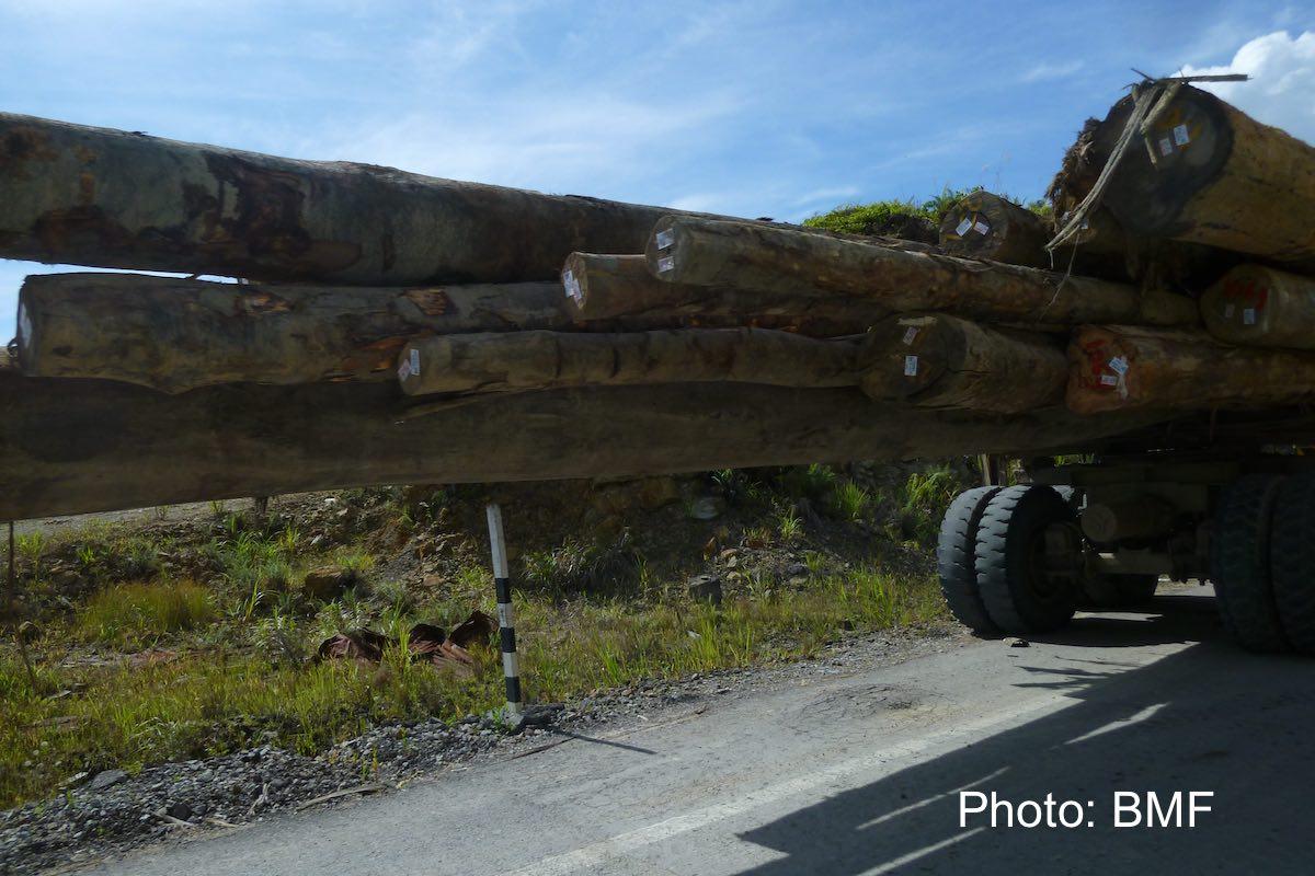 pic2_Shin-Yang_logging_truck.jpg
