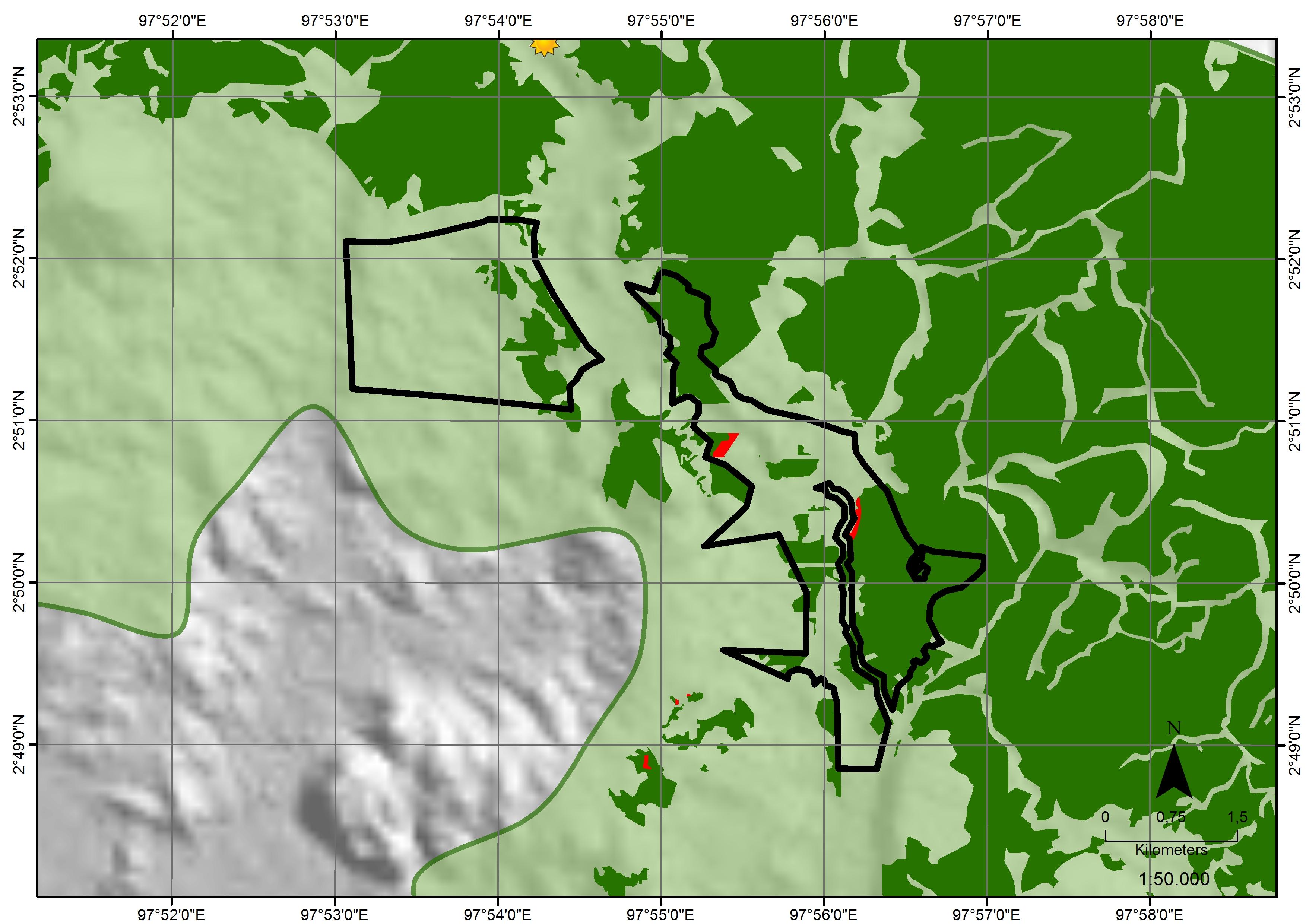 Indo Sawit satellite analysis image