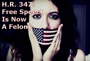 H.R. 347 would make free speech a felony