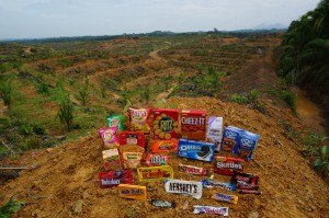Products made by the Snack Food 20 are displayed in front of an area of recently cleared Rainforest in North Sumatra, Indonesia