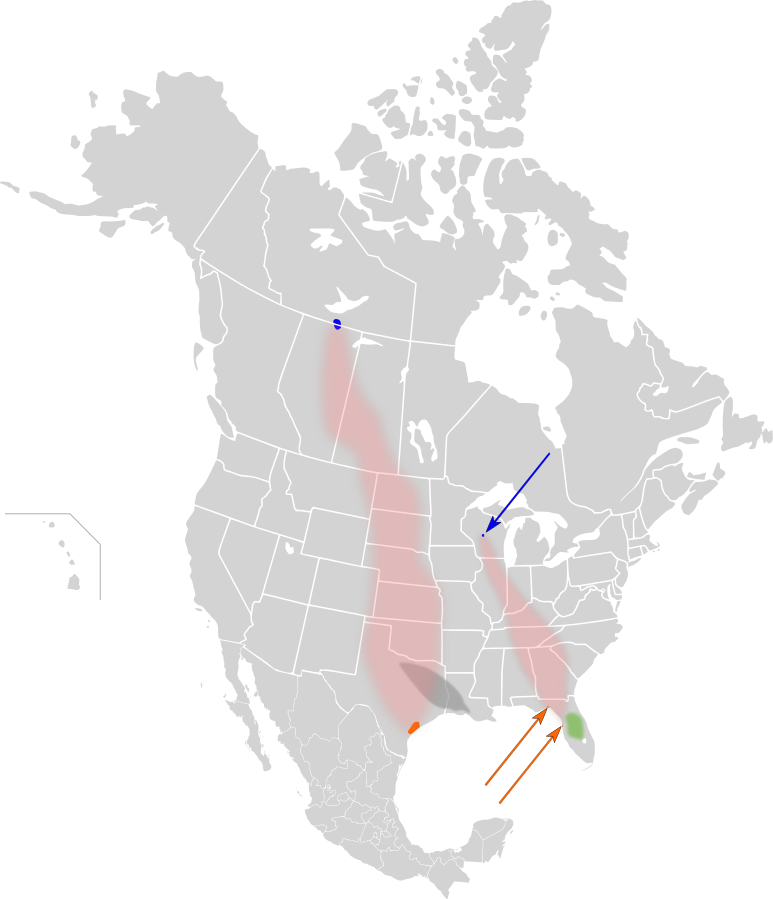 The western winter, summer and migratory habitat of the Whooping Crane lines up almost exactly with the rout of Keystone XL.