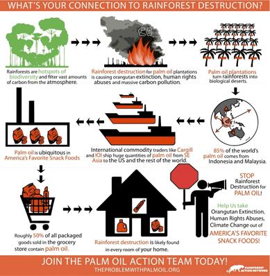CARGILL: Timeline to Transformation - Rainforest Action Network
