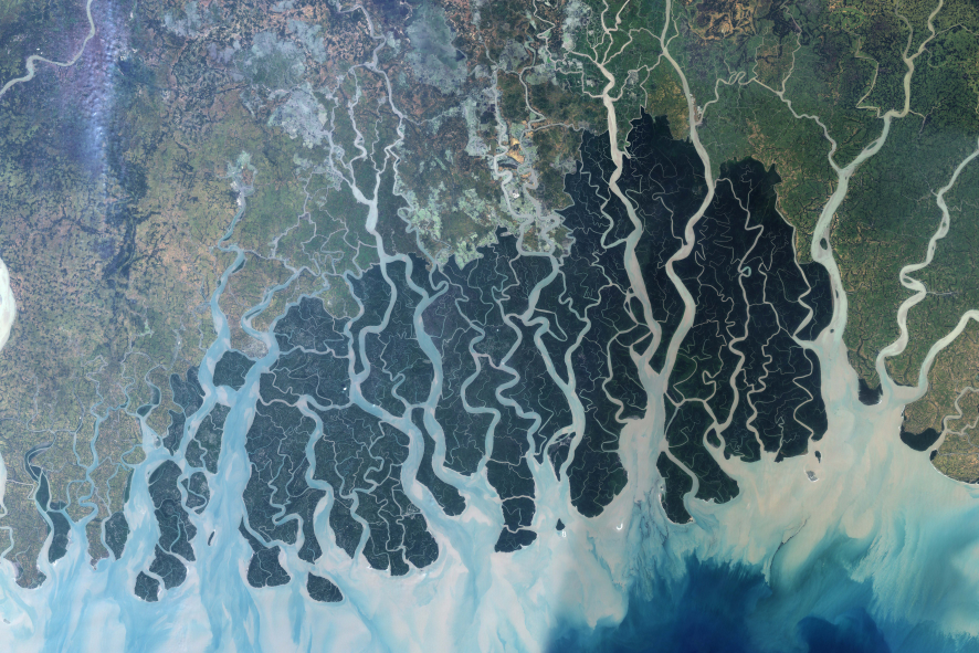 Sundarbans_from_space.png