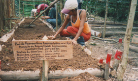 latin-american-permaculture-network-of-peru-redpal-peru-on-behalf-of-achual-sustainable-harvest-project-1