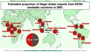 Illegal Logging from REDD Countries