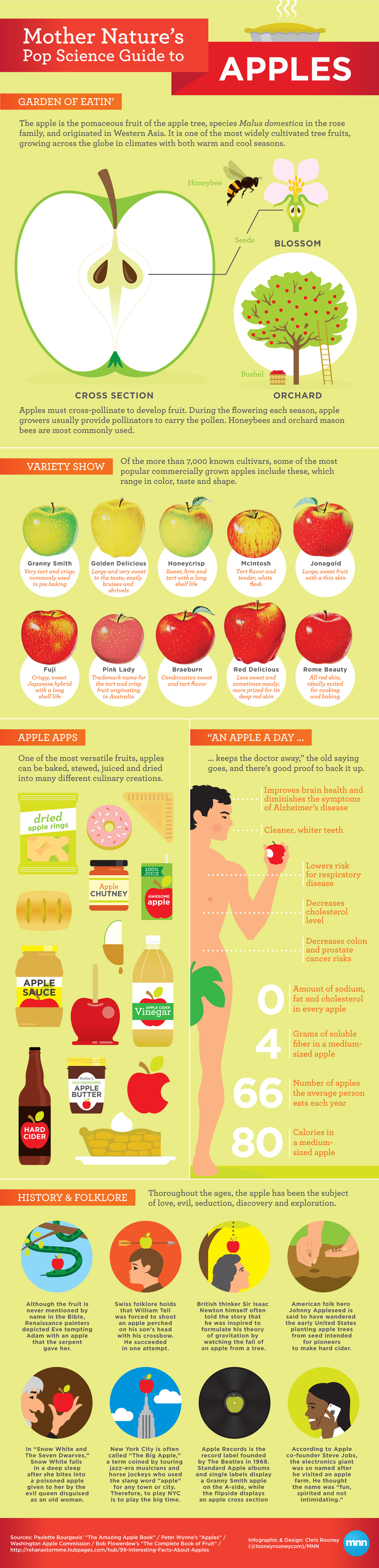apples_infographic.jpg
