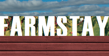 farmstaygraphic.png