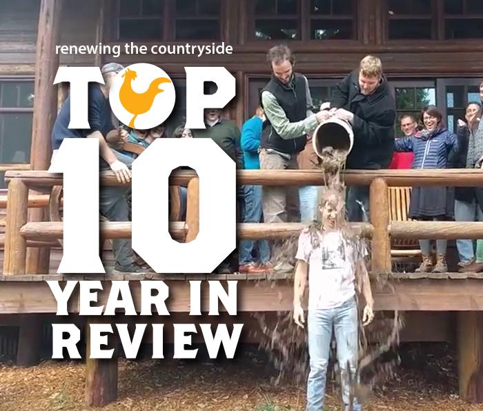 2016-top10.png