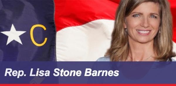 Rep Lisa Stone Barnes Banner Image