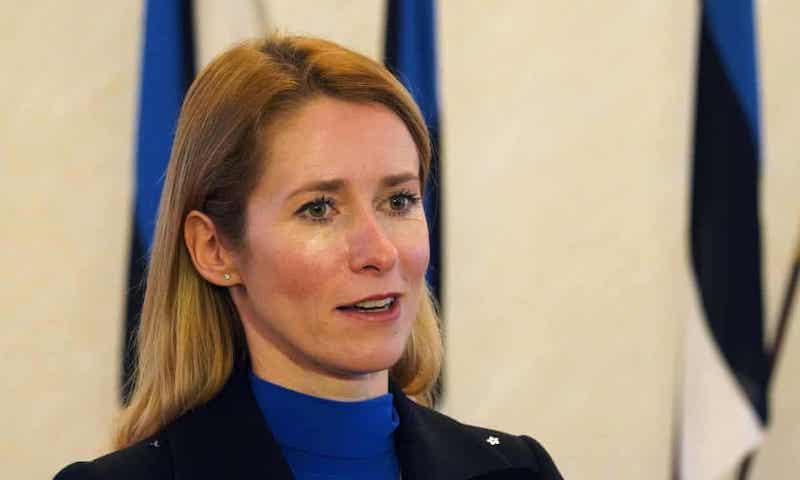 Estonian_president.jpg