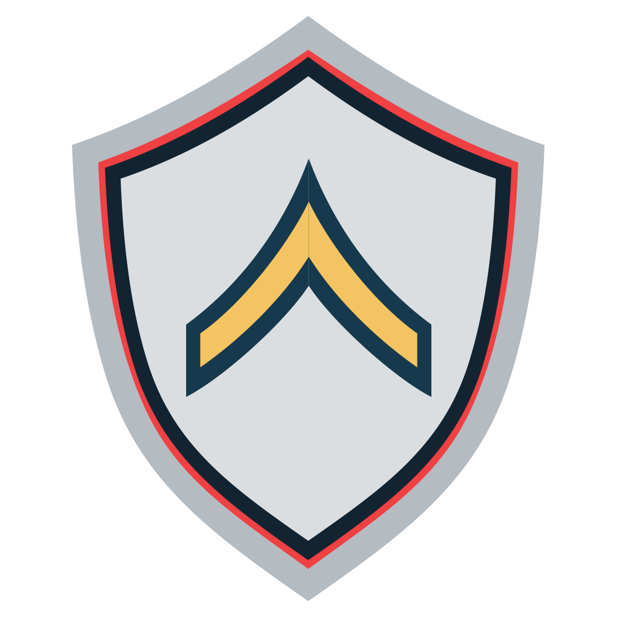Military Badges: Private