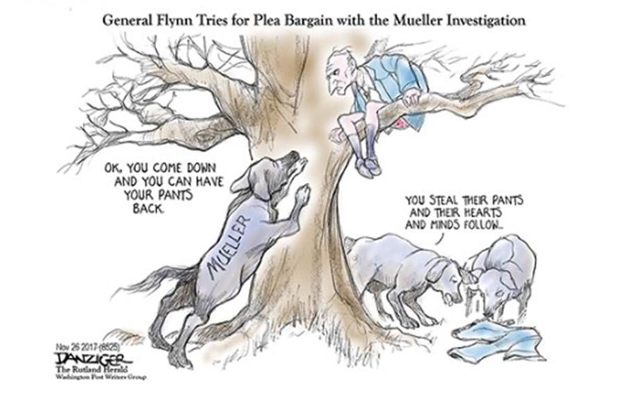 Flynn Up Tree