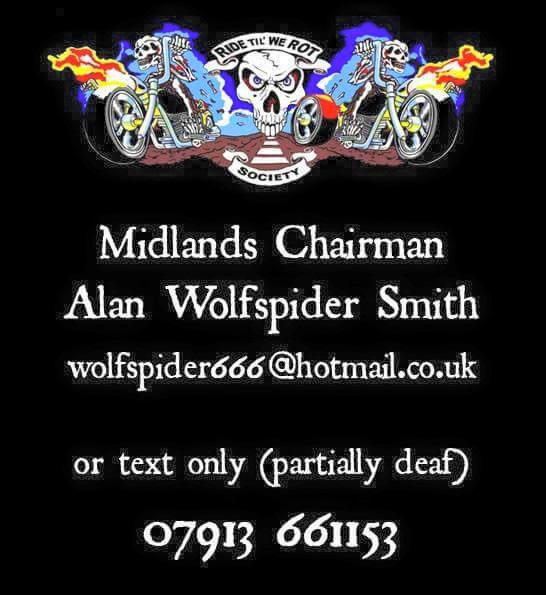 midland-chair-wolfspider.jpg