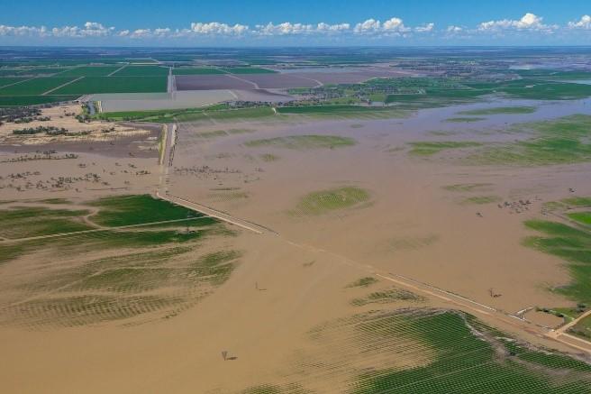 Floodplain harvesting and regulation disallowance vote Image