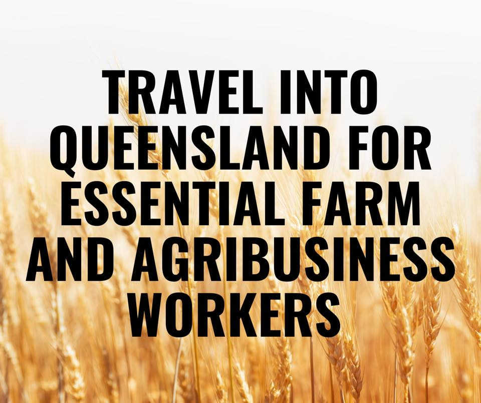 Extension of Queensland agribusiness worker permit  Image