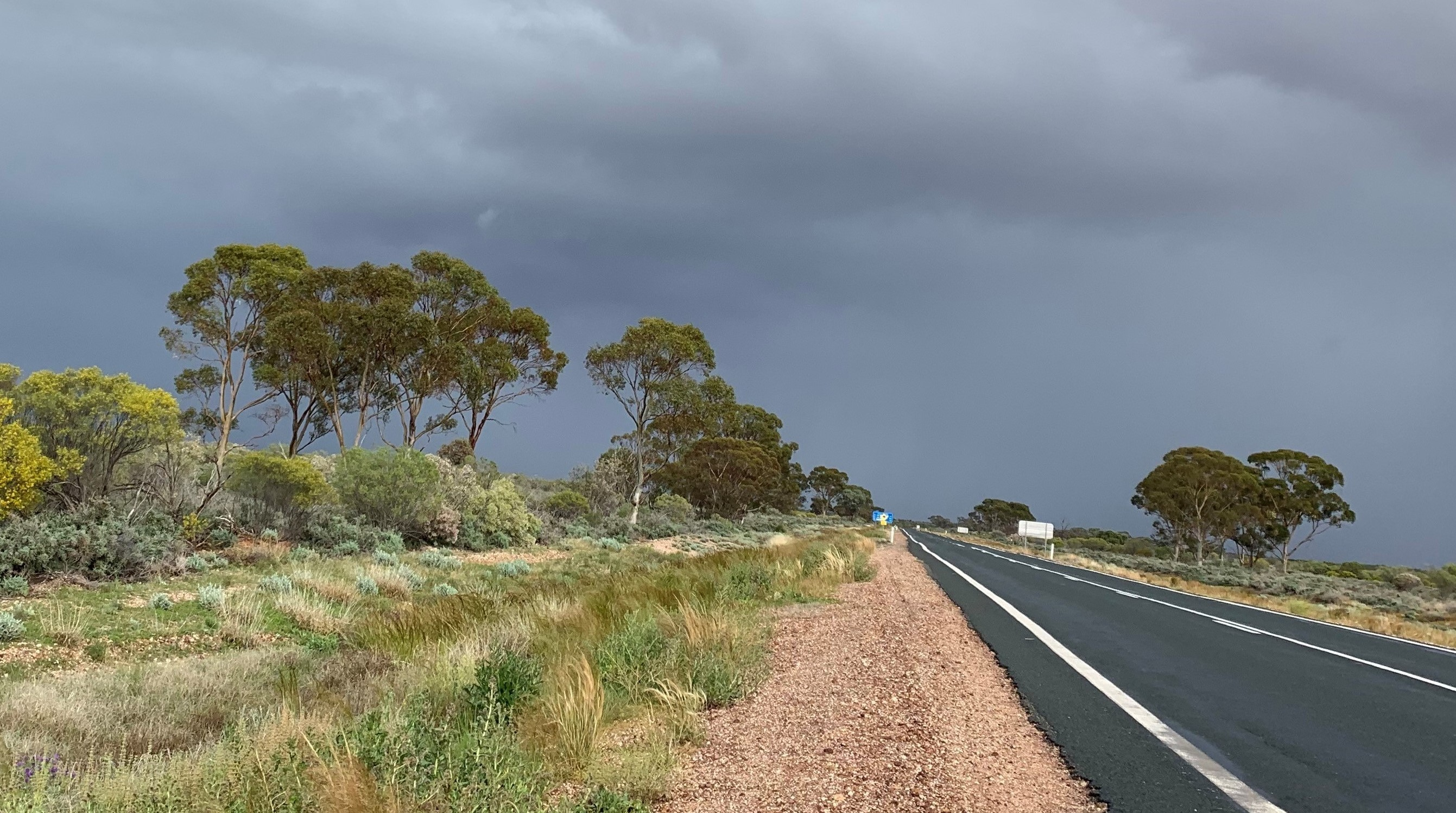 Far West drenched with record rainfall Image
