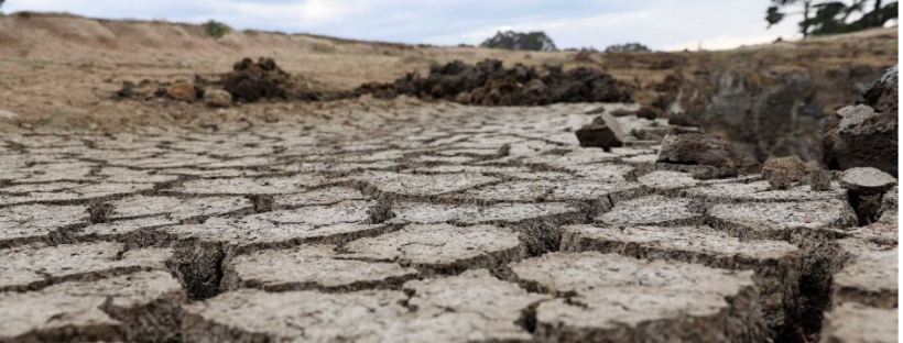 Stop shuffling around bureaucrats and provide real drought support Image