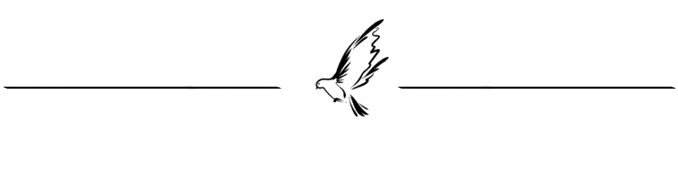 dove_divider_2.png