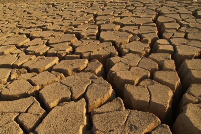 صورة توضح جفاف الطبقة العلوية من التربة