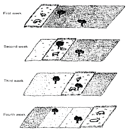 صورة تبين طريقة الرعي الدوري