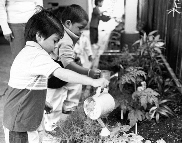 boy-watering-garden.jpg