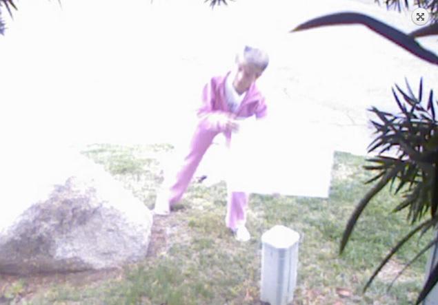 PinkPanther2.jpg