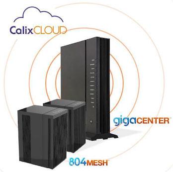 Calix Fiber Router