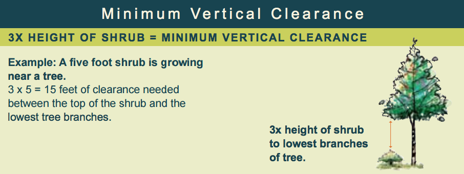 Vertical Clearance