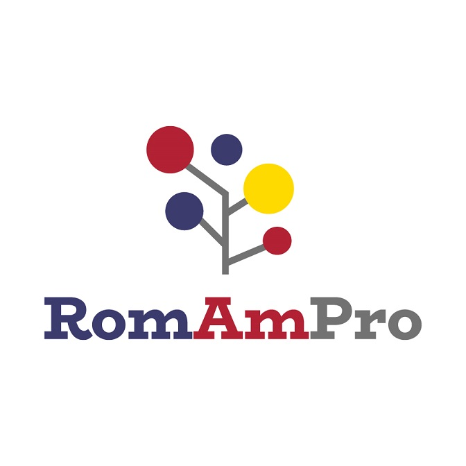 Romanian-American Professional Network