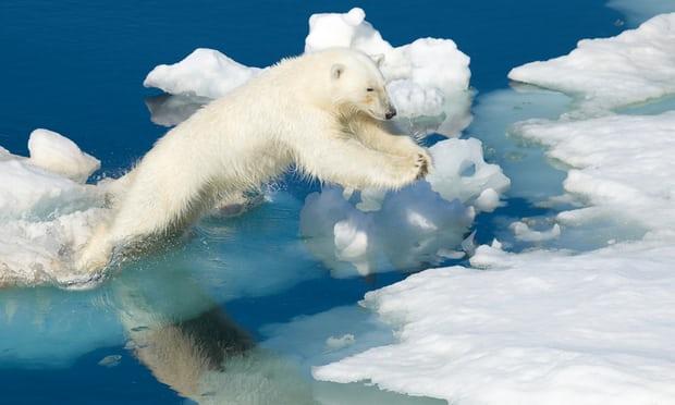 arctic_heat_wave.jpg