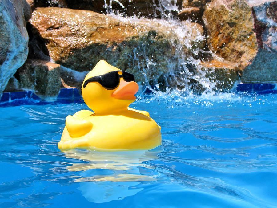 Pool_Party_Image.jpg