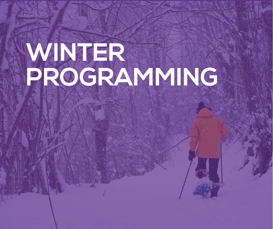 FB_-_PSA_-_Winter_Programming.png