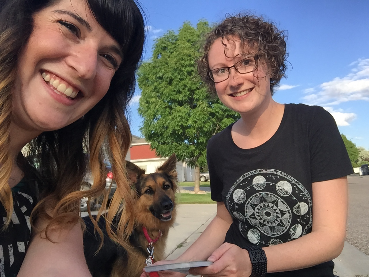 Doorknocking_with_furry_friends.jpeg