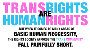 trans_discrimination_thumbnail.png