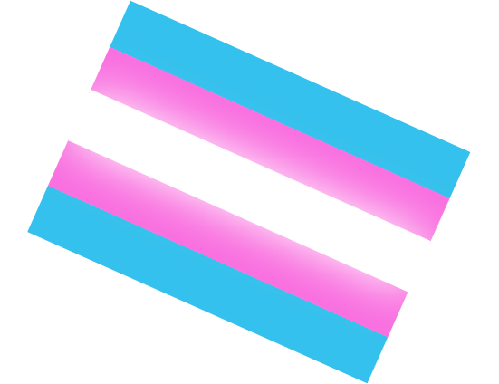 trans_equal_sign.png