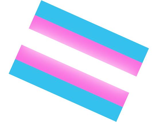 trans_equal_sign.png
