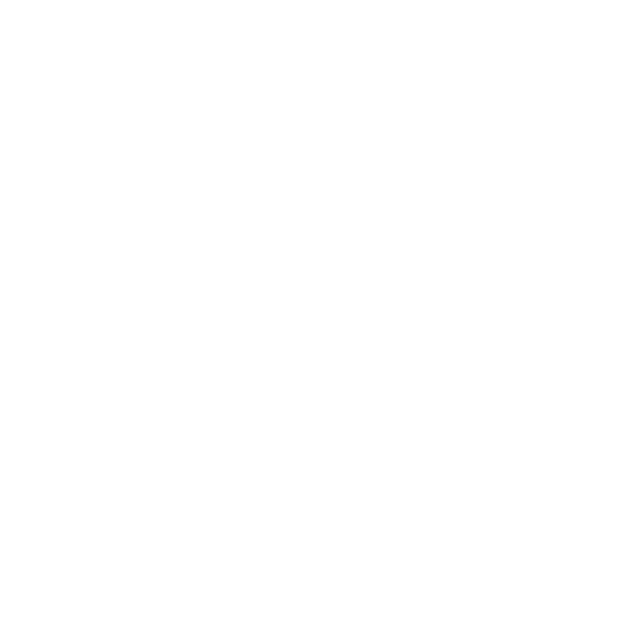 history save the american river association 1990s Decade