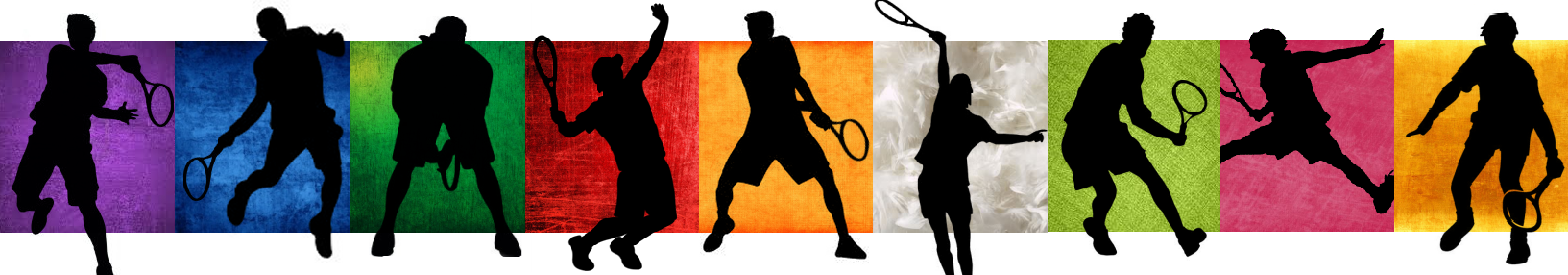prince_of_tennis___seigaku_team_banner_by_swisskun-d7s0v4l.png