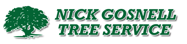 Nick_Gosnell_logo.png