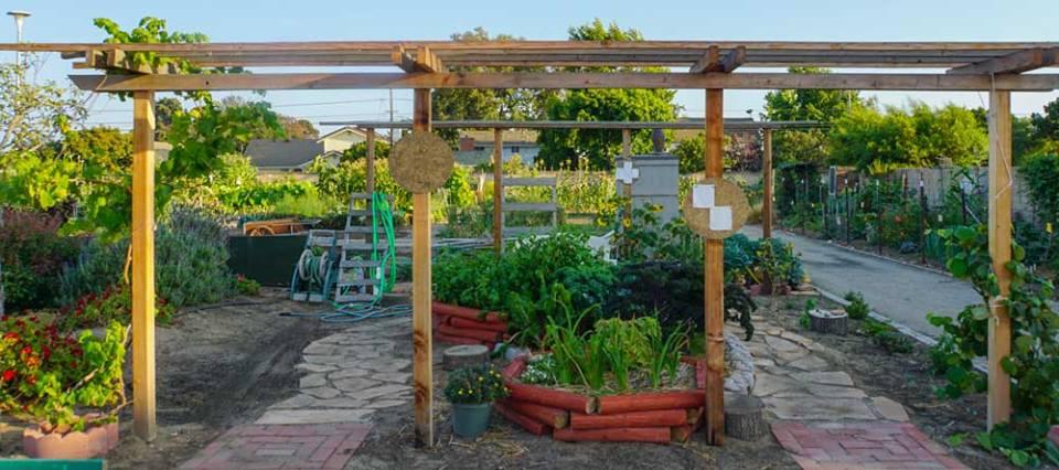 edible_landscaping_demo_garden.jpg