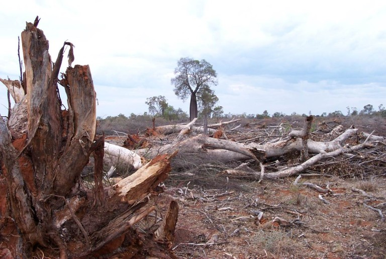 Land Clearing Bill
