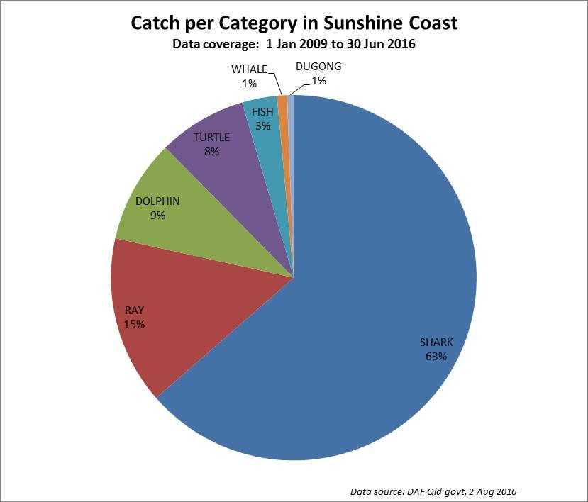 Pie Graph of shark net catch