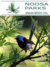 Noosa Parks Associations Inc - SCEC