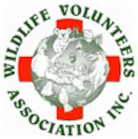 Wildlife Volunteers Association Inc (WILVOS) - SCEC