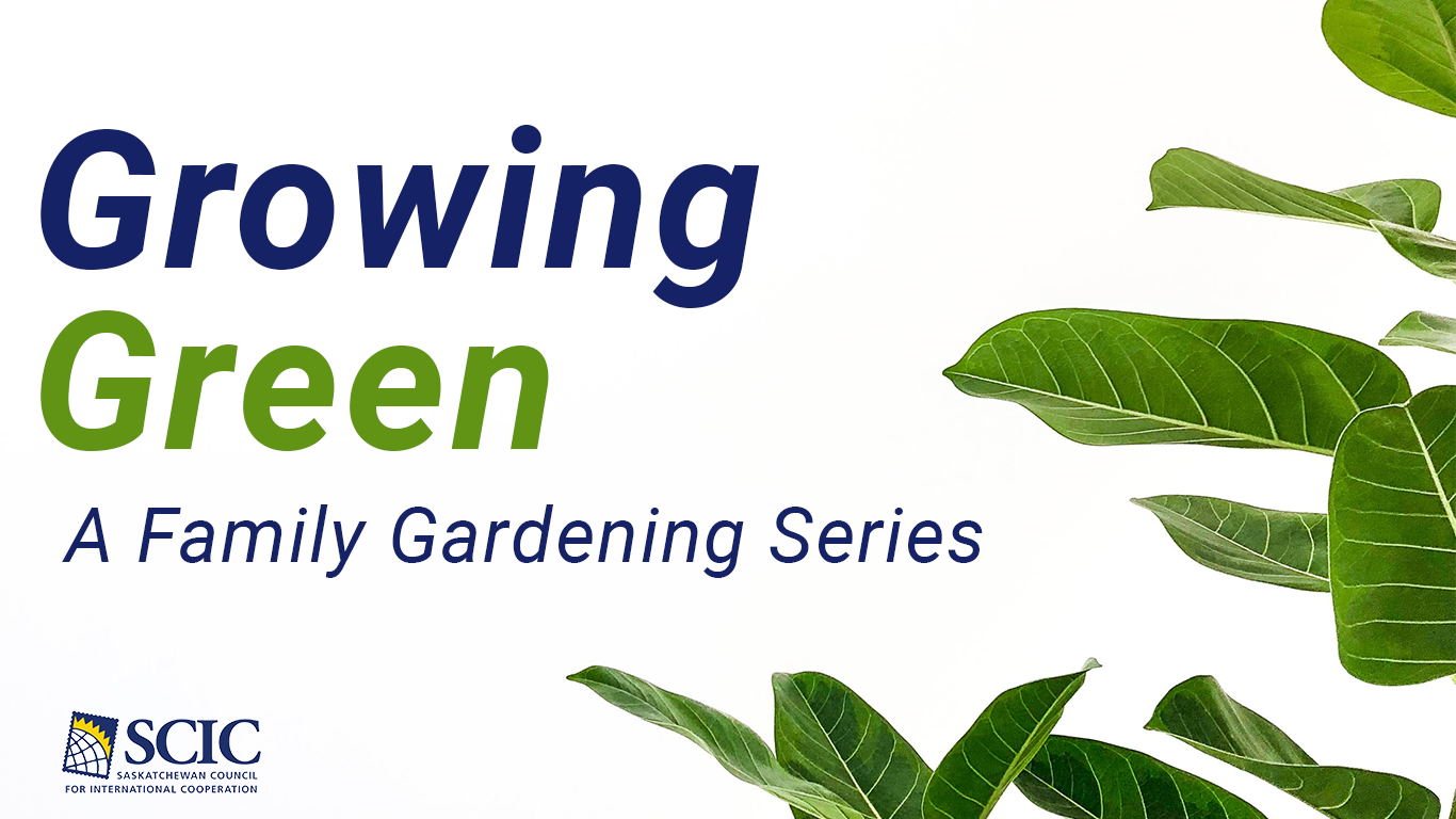 A Family Gardening Series | Growing Green
