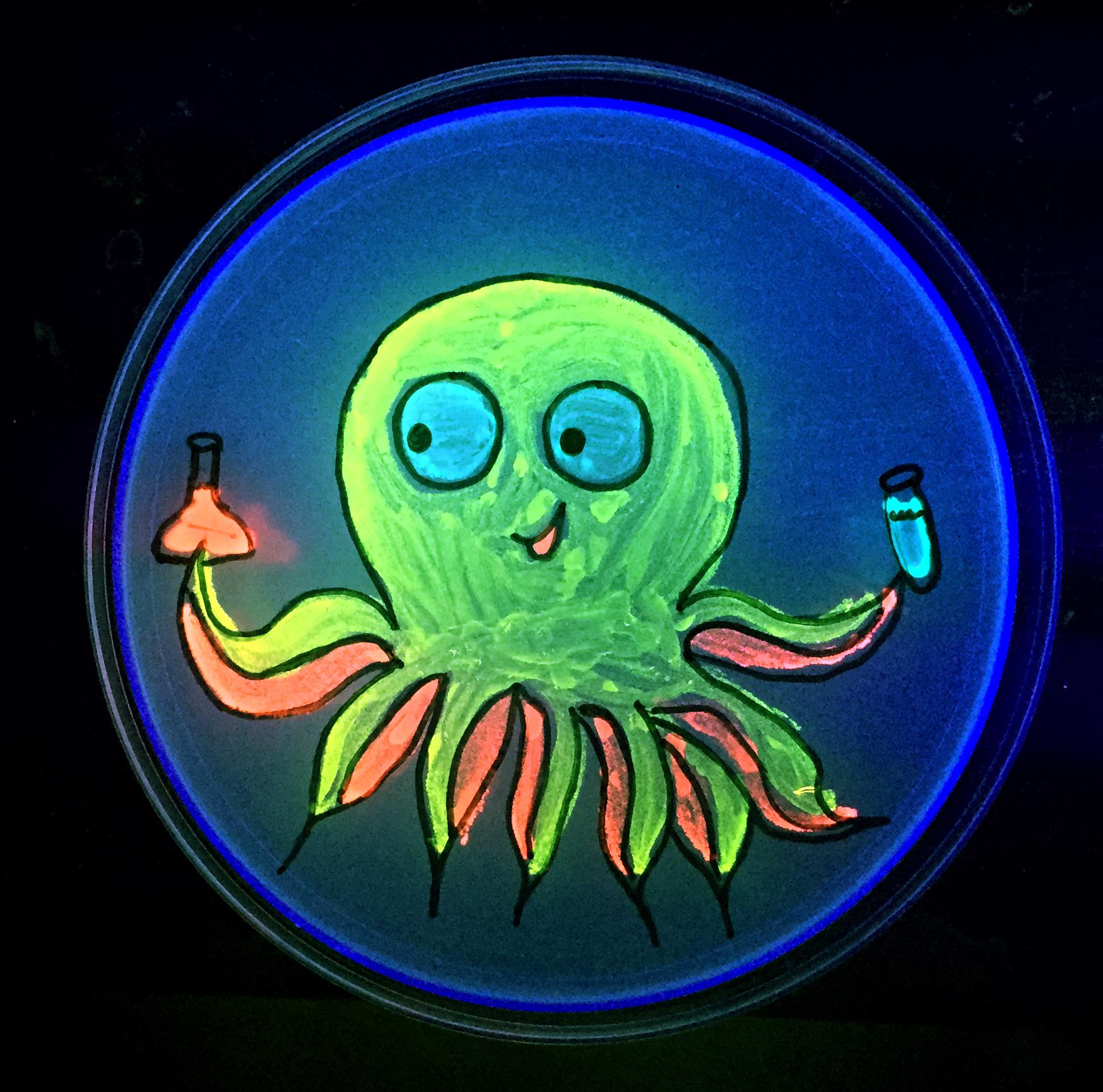 Octopus_plate4-13-15.jpg